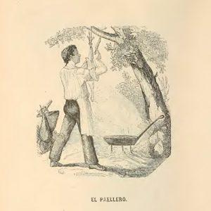 paellero