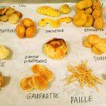 Aardappel variaties