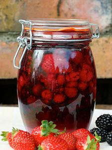 roodfruitrumpot