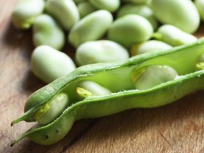 tuinbonen « recepten en kooktips voor klassieke gerechten en